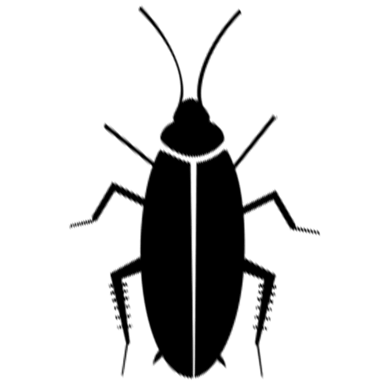 Cockroaches Icon