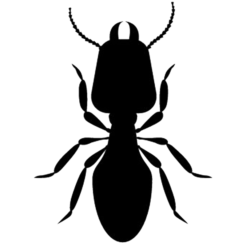 Termites Icon
